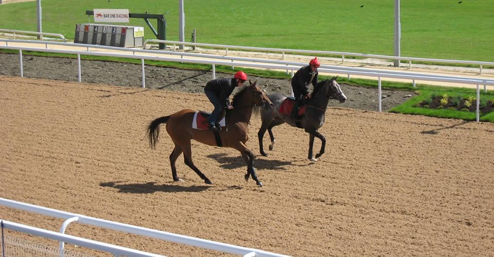 Dundalk-Racecourse_41