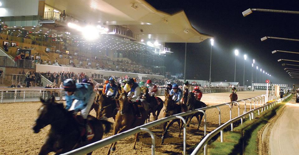 Dundalk-Racecourse_51