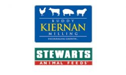 Kiernan Milling – Design & Build Feed Mill